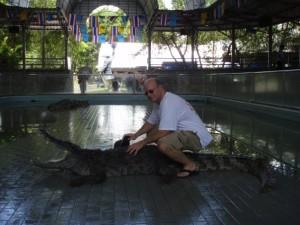 wolfson crocodile